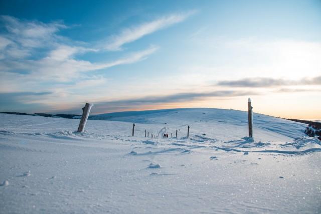 Winter activities & services