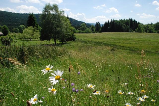 Locations à Liézey
