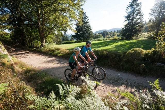 Mountainbike, e-bike