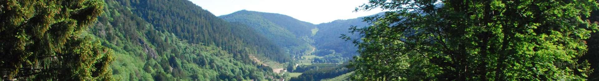 Vue vallée Le Valtin