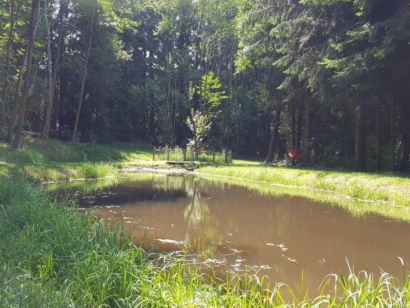 camping-au-clos-de-la-chaume-vosges-etang-952