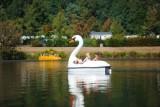 lac-de-moselotte-bateaux-814