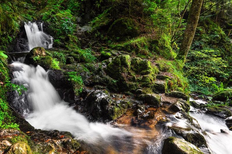 sejour-ecotourisme-cascade-273533