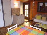 location vacances appartement gerardmer vosges G0077