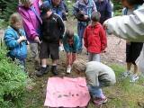 sejour-ecotourisme-animation-enfants-273532