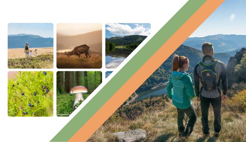 randonnée dans les Hautes Vosges